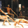 THE BIO MECHANICS OF DANCE: THE LUMBO-PELVIC HIP COMPLEX