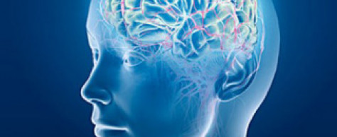 Neuroplasticity: The Power of the Mind